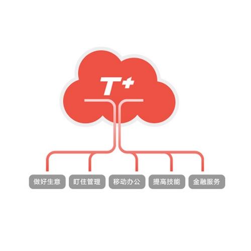 镇江用友T+软件